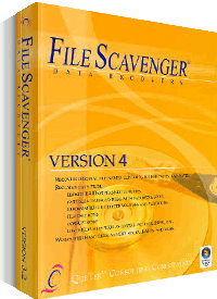 File Scanvenger Professional