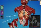 Cyber-Anatomy Med VR - Peito