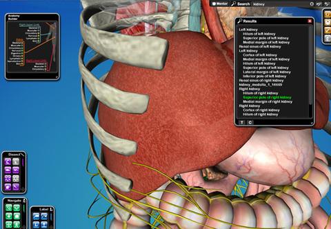 Cyber-Anatomy Med VR - Orgãos
