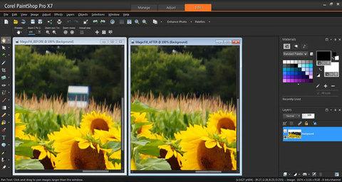 PaintShop Pro X7 - Edição