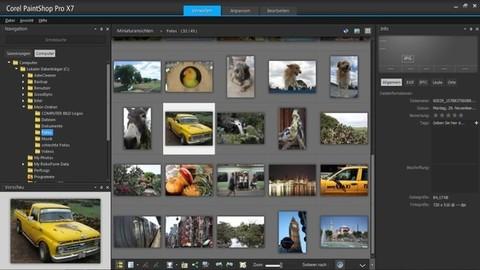 PaintShop Pro X7 - Biblioteca