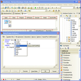 Oracle Data Access Components - Tela inicial
